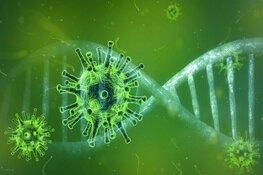 Geen extra maatregelen op Schiphol na eerste corona-besmettingen in Nederland